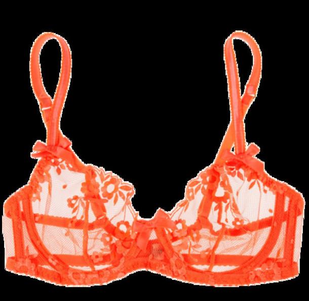 5b198680b4 underwear orange bra orange lace bra lace bra
