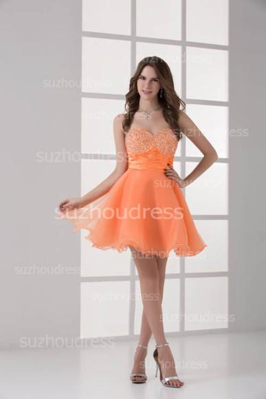 prom dress organizer