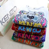 sweater,lion,sweatshirt,colorful,red,pink,blue,yellow,orange