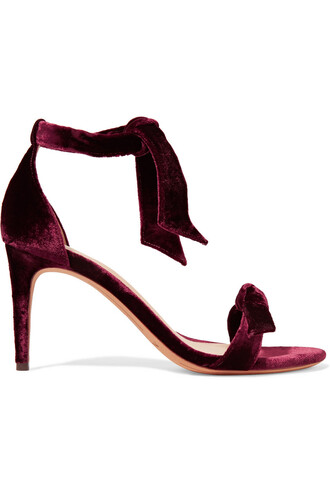 bow embellished sandals velvet burgundy shoes