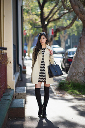 metallic paws,blogger,chevron dresses,chevron,thigh high boots