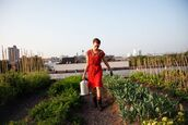 red dress,annie novak,new york city,farmer,dress