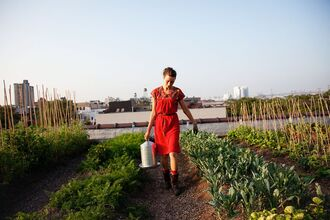 red dress annie novak new york city farmer dress