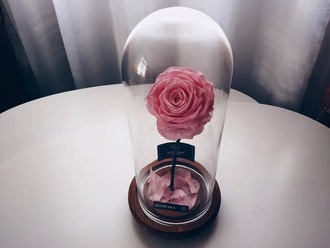 home accessory beauty and the beast roses