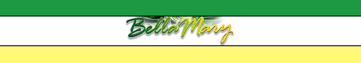 Bella Mary Brazilian Bikinis and Lingerie | Fique Simplesmente Bella