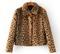 The roarrr jacket