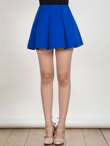 Pleated Skirt Mini Skater Skirt - Choies.com
