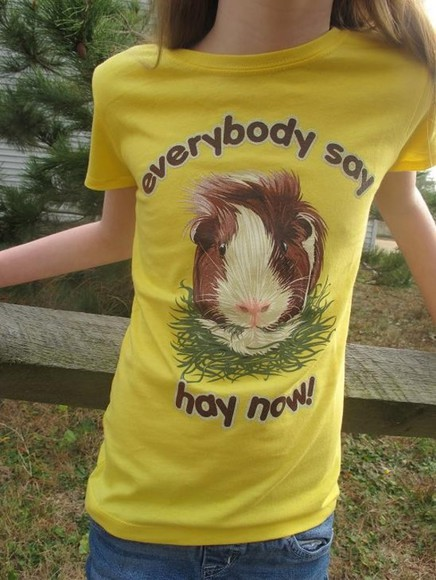 funny t-shirt quote on it guinea pig yellow
