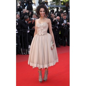 Mallika sherawat strapless prom dress 2010 cannes film festival red carpet