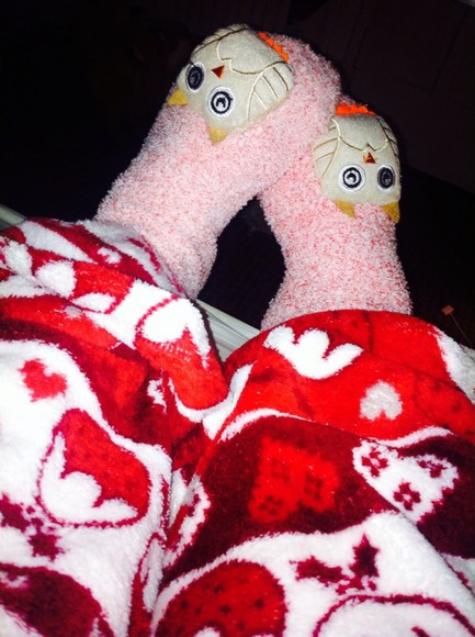 owl pants christmas socks
