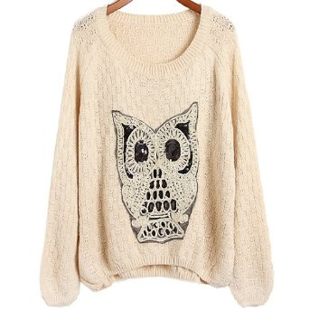 Amazon.com: Hot OWL Knitwear Women Casual Crewneck Batwing Plus Size Jumper Pullover Sweater Medium,Apricot: Clothing