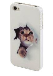 jewels,phone cover,iphone case,cats,cute,iphone 5 case