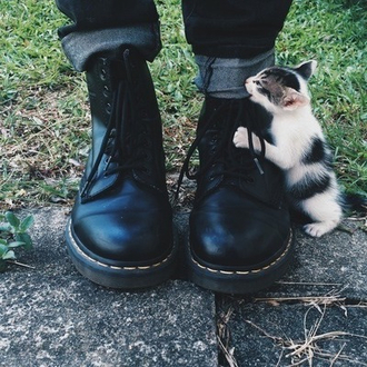 shoes dr. marten boots smooth cats winter boots