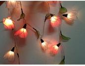 home accessory,fairy lights,light,home decor