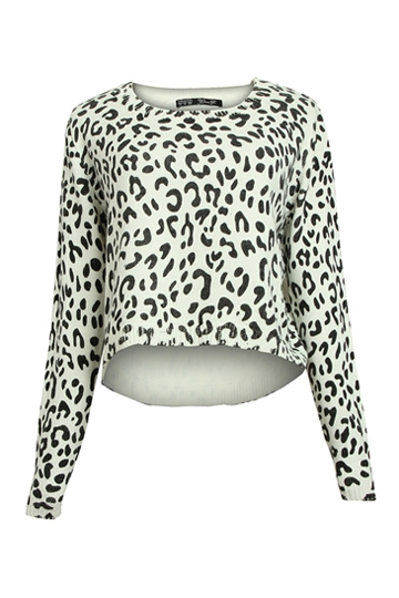 Stylish Leopard Pattern Sweater [FKBJ10172] - PersunMall.com