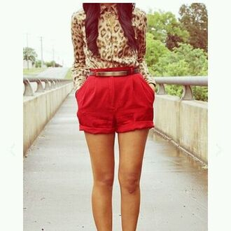 shorts classy big pockets leopard print red high heels high waisted shorts waist belt blouse belt shoes shirt platform lace up boots roll up shorts fashion outfit button up pleated bag hipster gold leapord print booties shoes
