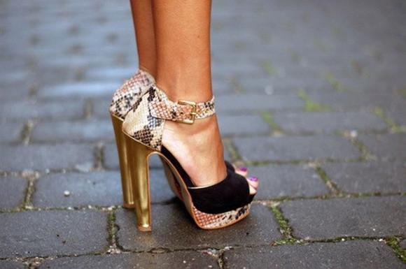 tiger print shoe leopard print