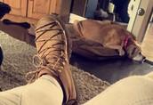shoes,tan,camel,boots,lace-up shoes