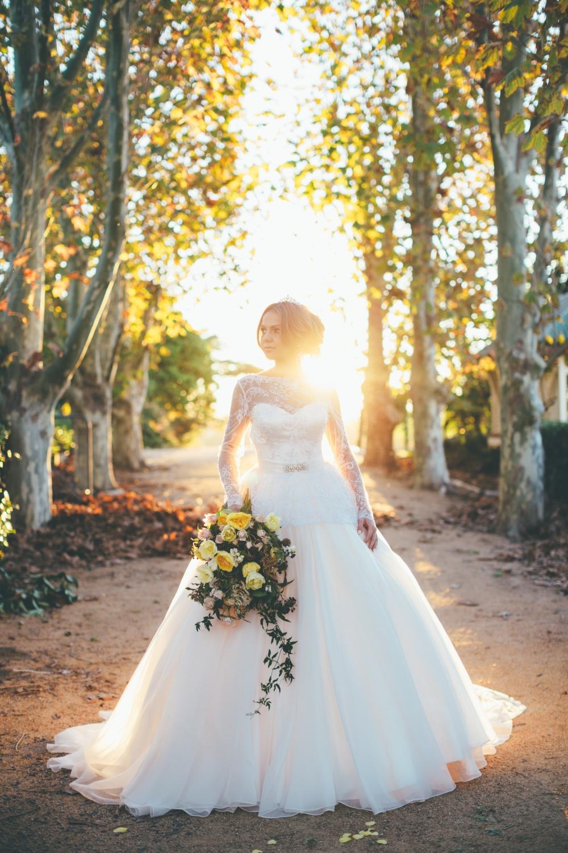 Buy champagne chiffon 2015 wedding ball for Wedding dress appliques suppliers