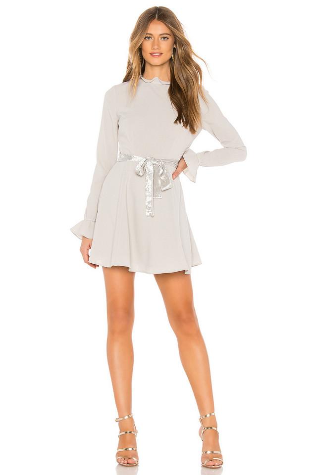Donna Mizani Twiggy Dress in gray