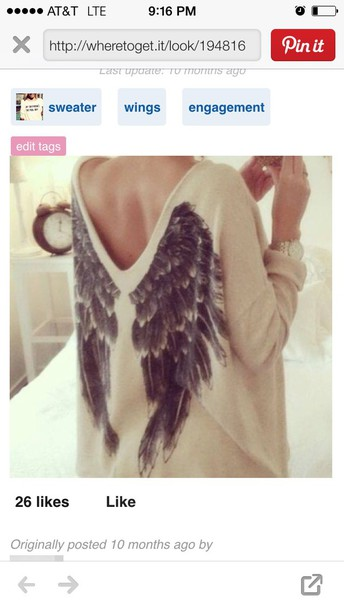 sweater blouse wings wing sweater