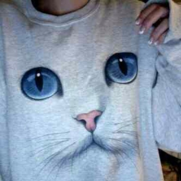 sweater cat pullover cats