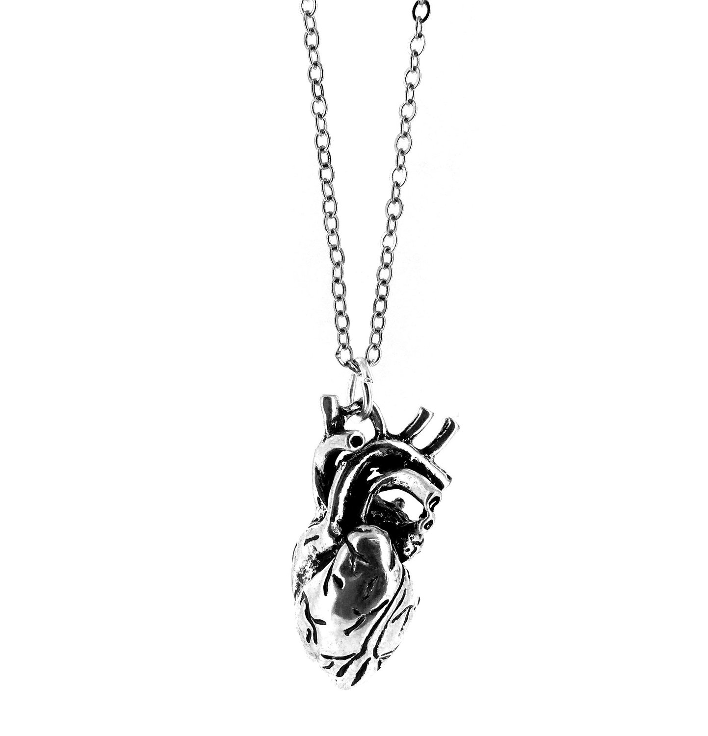 be1df40e3 Anatomically Correct Human Heart Charm Necklace - Gift Boxed: Amazon.co.uk:  Jewellery