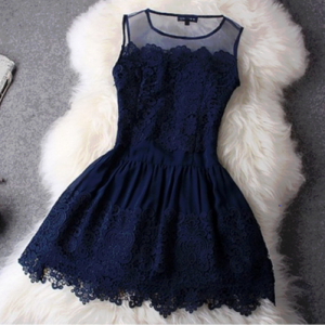 Beautiful vintage court style organza lace dress