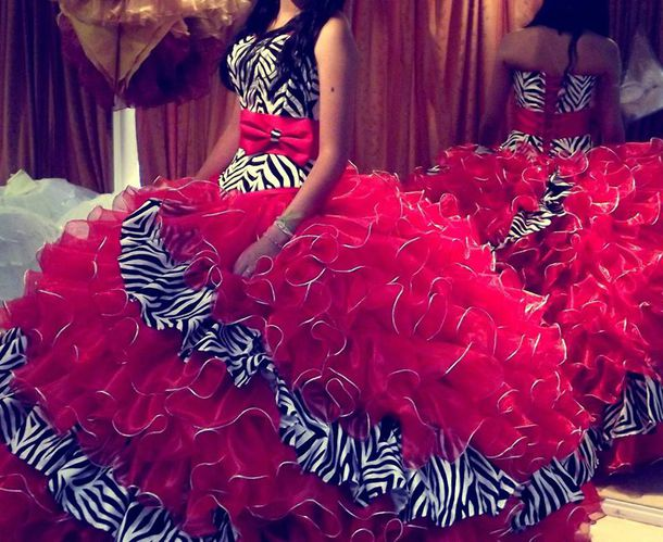 Dress: quinceanera dress, hot pink, zebra, distribuidor - Wheretoget