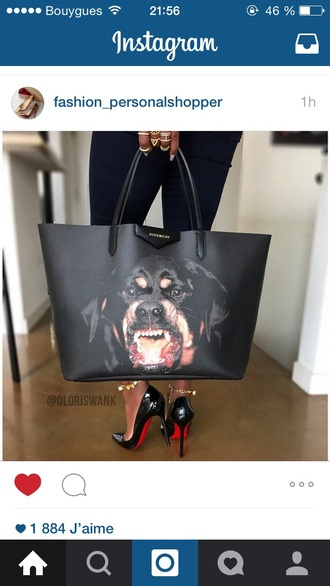 bag black dog