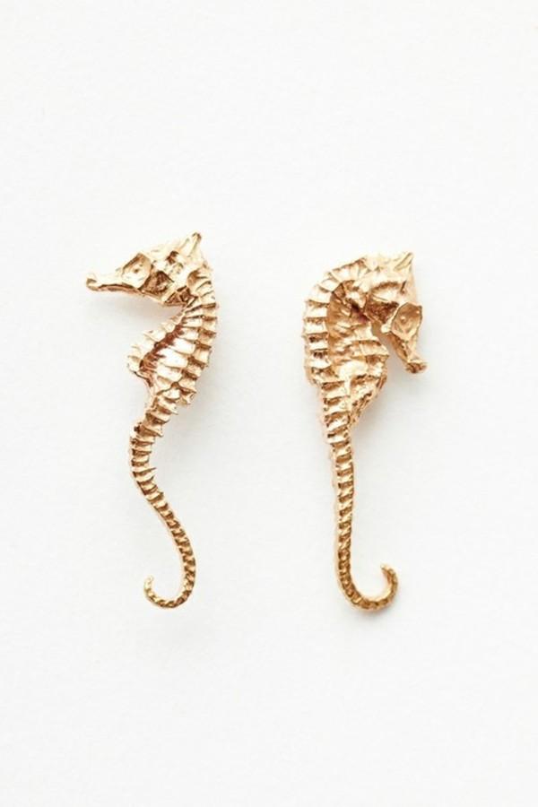 jewels gold earrings seahorse earrings seahorse