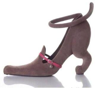shoes cat shoes stilettos cats funny