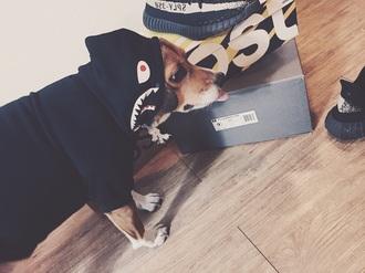 sweater bape shark dog hood bape dog