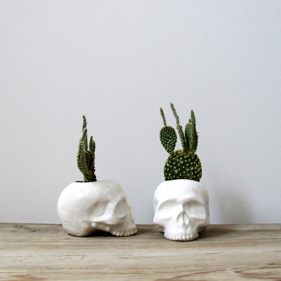 Ceramic Skull Planter  perfect for cactus succulent or by mudpuppy