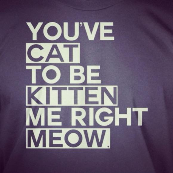 3% off  Tops - You've cat to be kitten me from Kustom's closet on Poshmark