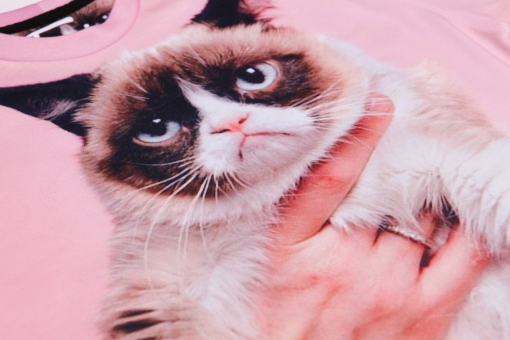 Original SEXY SWEATER GRUMPY CAT | Fusion® clothing!