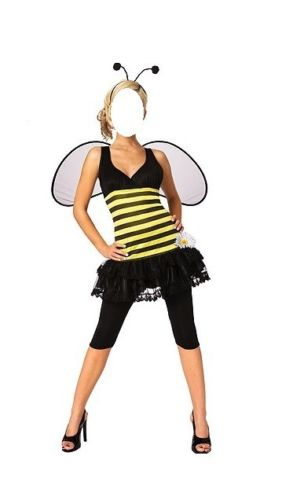 Sweet as Honey Bumble Bee Adult Halloween Costume | eBay