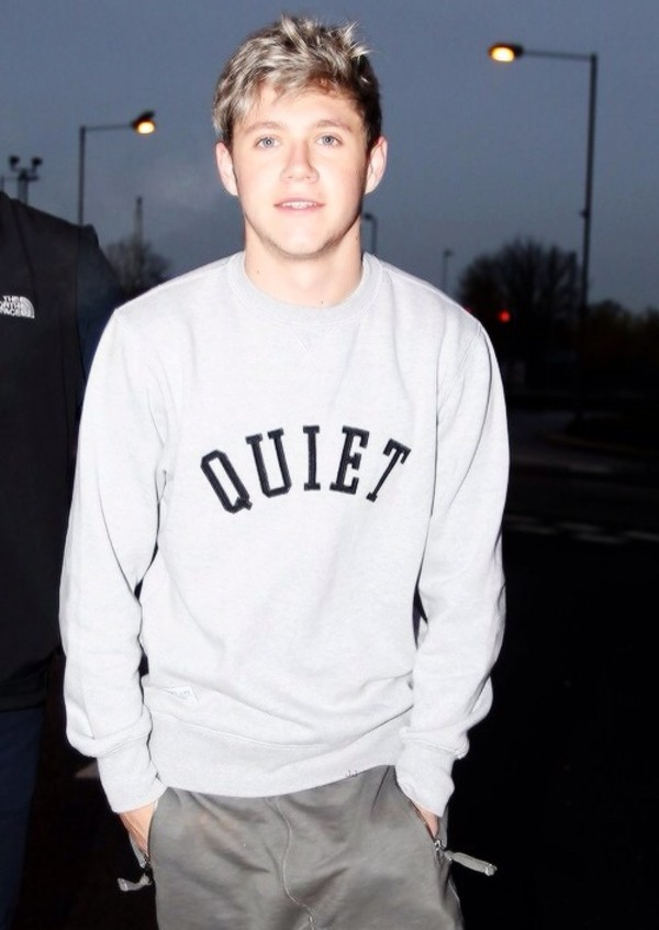 sweater grey pullover niall horan niall horan sweater grey sweater niall nialler white grey one direction