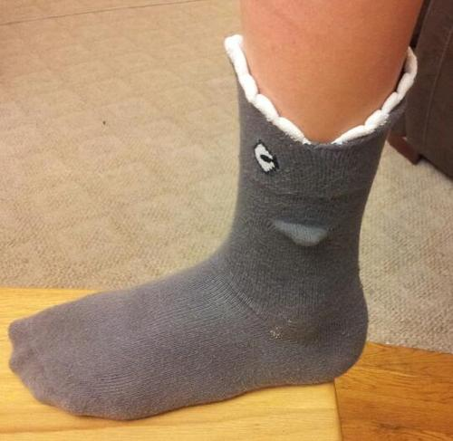 Amazon.com: Shark Bite 3 Dimensional Trouser Socks by Foot Traffic One Size (Women's Shoe Sizes 4-10): Clothing