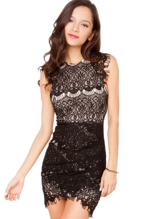 Lovecat Lace Lady Dress in Black