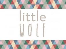 Galaxy Highwaisted Shorts  |   Little Wolf Vintage