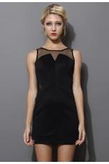 Black Mesh Paneled Sleeveless Dress  - Retro, Indie and Unique Fashion