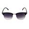 Wayfarer sunglasses / back order – holypink