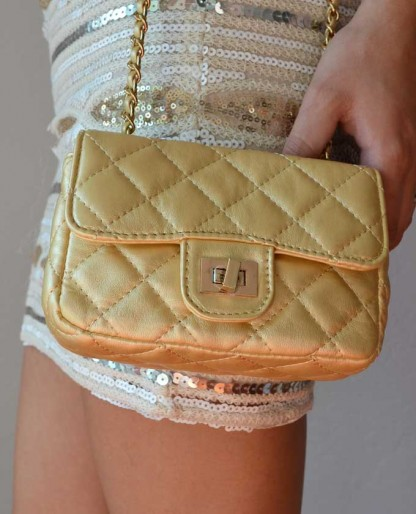 Trendy Clothing, Fashion Shoes, Women Accessories | The Perfect Little Purse In Gold  | LoveShoppingMiami.com