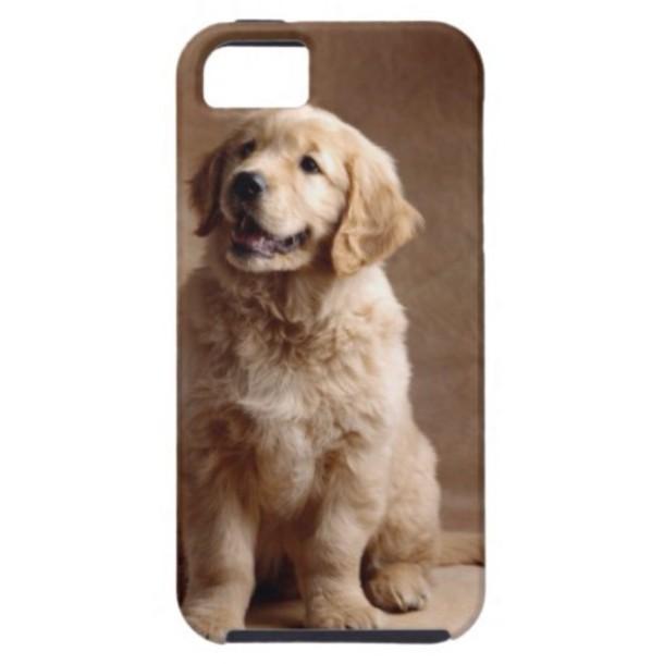 phone cover golden retriever puppy iphone 5c casese
