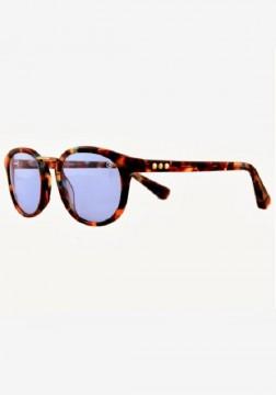 Taylor Morris - Vredefort Sunglasses Tortoiseshell at Beach Cafe UK