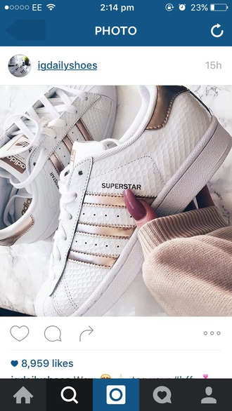 shoes superstar adidas adidas superstars cute sneakers white gold weheartit tumblr white shoes amazing cute girly teenagers pretty swag adidas shoes adidas originals cool sports shoes gym rose gold adidas superstar gold adidassuperstars mettalic lovely nude sneakers metallic white sneakers low top sneakers sneakers adidas rose gold shorts