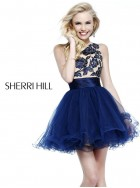 Sherri Hill 21219 Prom and Homecoming  Dress 2013