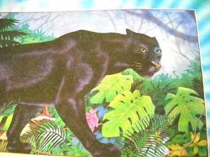 Grateful Dead Concert TIE DYE T Shirt Panther Save Rainforest Mikio 1989 NEW M | eBay