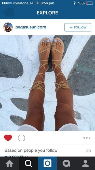 shoes gladiators capri tan sandals leather sandals flat sandals strappy sandals brown sandals flat gladiator sandals gladiator scandals brown gladiator flats womens gladiators lace up flats cute boho